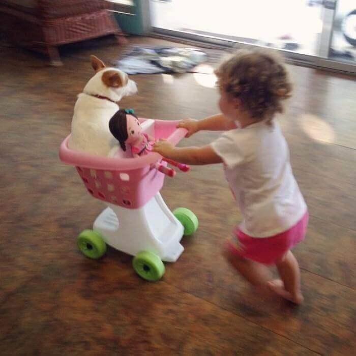 Bambina porta cane e bambola nel carrellino.