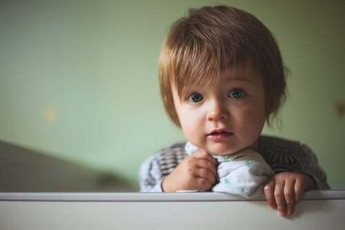 Bambino che guarda
