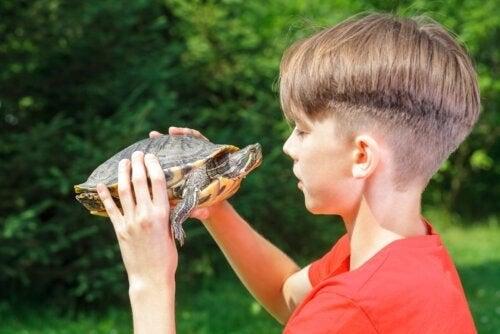 Effetti della tecnica della tartaruga sull'autocontrollo