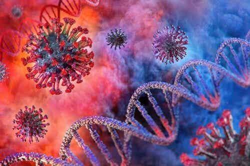 Come fermare il coronavirus: perché è importante chiudere le scuole
