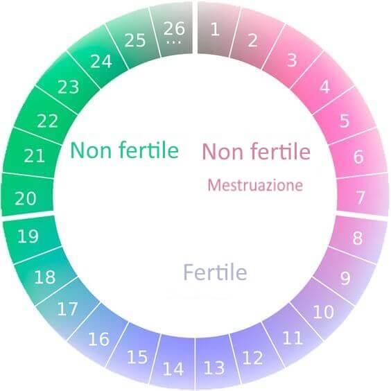 Calendario mestruale per applicare il metodo sintotermico