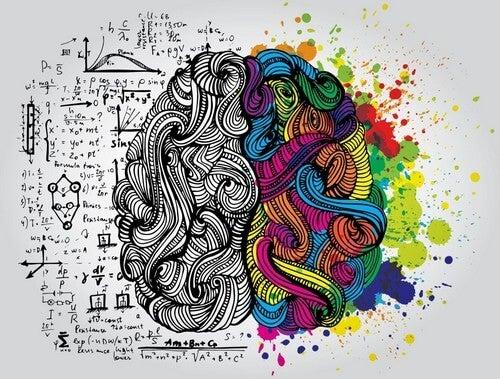 L'Accademia dell'Intelligenza di Augusto Cury