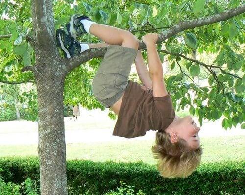 Bimbo che gioca su un albero.