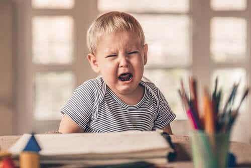 I capricci dei bambini: cosa ci insegnano?