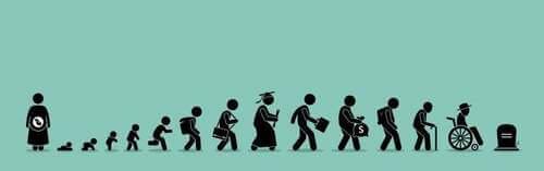 Pittogramma ciclo della vita.