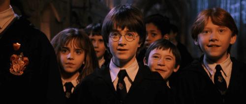 Harry Potter e i suoi compagni di avventura.