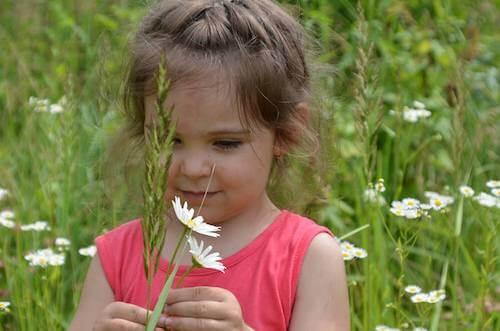 Bambina che cammina in un campo con in mano delle margherite.