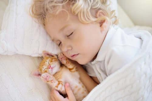 Bambino biondo che dorme insieme ad un gatto.