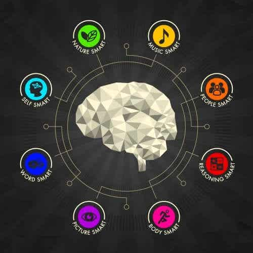 Come stimolare le intelligenze multiple a casa