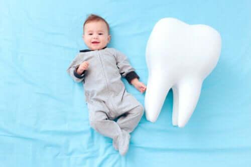I denti da latte: curiosità sui denti provvisori dei bambini